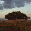 the full moon rising